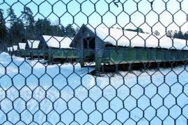 Laitilan rakennus- ja ympäristölautakunta puolsi tammikuussa Kusniin perustettavaa siitosnaarasminkkitarhaa, mutta eväsi ympäristöluvan Suontaahan suunnitellulta Vakka-Minkille.