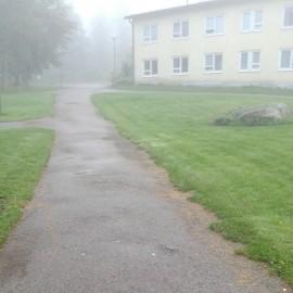 Aamusumun tunnelmia päärakennukselle kävellessä.