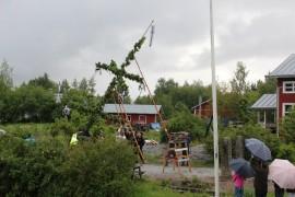 Juhannussalko nostettiin pystyyn Pyhärannan Santtiossa. Kuva: Arja-Liisa Heilä