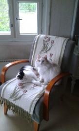 Tää on meidän yhteinen tuoli.