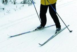 Sunnuntaina ei tarvitse hiihtää yksin. Kuva: Jari Laurikko
