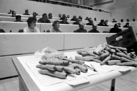 Tilaisuuden osanottajat kuuntelivat tarkkana kuin porkkana selvitystä porkkanan uusista laatuvaatimuksista. Kotimaiset kasvikset ry:n konsultti Juhani Piirainen esitteli Laitilassa, miten EU:n myötä vihannesten laatu paranee. Laitilan Sanomat 20.3.1996