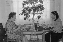 Annikki Lainio (vas.) ja Hilkka Tyynelä hakivat nypläysopin kansalaisopiston piiristä ja nyt erilaiset pitsit syntyvät jo sujuvasti. Laitilan Sanomat 10.4.1996