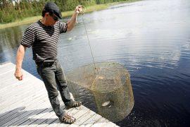 Hepojärviseuran puheenjohtaja Jussi Vaajasaari pitää Hepojärven veden laatua yllä kalastamalla niin sanottuja roskakakola.